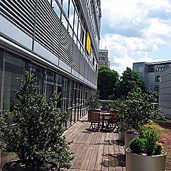 Steuerberater RUB-DV Berlin